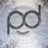 pd canvas - frozen tunes from the wonderland - live deep techno mix