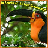 in search of the lost groove #25