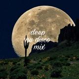 DEEP VOCAL  & NU DISCO MIX 2017 06 30