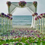 Wedding - Pre Ceremony - Sample