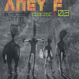 Aney F. - Exclusive Mix for Music After Dinner - 28.2.2013