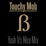 Touchy Mob - Yeah It's Nice (mixed by Touchy Mob)