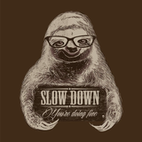 Slow Down - A new approach to House music