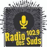 SALON DE MUSIQUE DE CEDRIC WATSON ET SARAH SAVOY PAR JEAN-PIERRE BRUNEAU - Lundi 13 juillet 2015