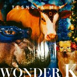 WONDER K – LIVE DJ SET @ DELPHINARIUM