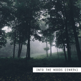 Si - Into The Woods [enr34]