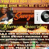 4.18.2013 Afternnon Snooz'ology show @ Gottahavehouseradio Chicago