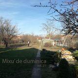 Mixu' de Duminica vol.27