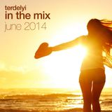 In the Mix - June 2014