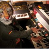 Under the Tiger Mask