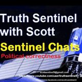 Truth Sentinel chat on political correctness