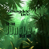Shaydee Gee - In The Jungle - mix one