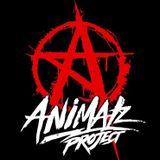 ANIMALz PRACTICE LESSON1