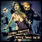 Sunday Mourning Coming Down: Vol 19