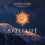 After Dark | Volume 13