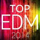 The best of Vocal Electro House of 2014 part 1