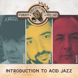Kingstown Funky Fellaz - Introduction to Acid Jazz