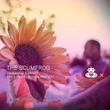 The Scumfrog - Robot Heart - 10 Year Anniversary - Burning Man 2017