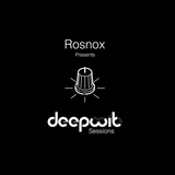 DeepWit Sessions EP 2.9 - Guest Mix by Rosnox