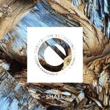 SUBCAST Episode 20: Shael