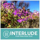 INTERLUDE 36