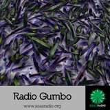 "Radio Gumbo Episode 1 ""The Meters"""