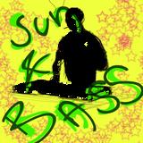 Sun & Bass 2013 - pre pre mode