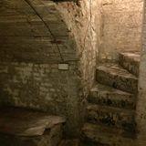 Cellar vibes 1