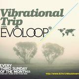 EvoLoop - Vibrational Trip 004