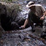 RA106fm_#44_Soundscape Ecology_Center for Global Soundscapes