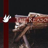 The Reason - Week 2 - Audio
