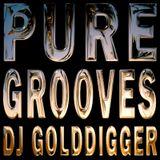 PURE GROOVES DJ GOLDDIGGER