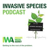 Episode 2- Invasive Species Podcast- Weeds, Lionfish & INNSA