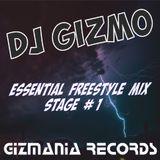 DJ Gizmo - Essential Freestyle Mix Stage One #1
