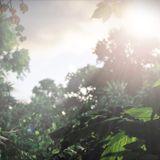 Episode 6 (God of War, Last of Us, Arma 3, News & Rumors)