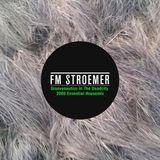 FM STROEMER - Groovenautics In The Deadcity Essential Housemix 2008