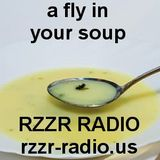 a fly in your soup (Episode 46 Wacky Wednesday)