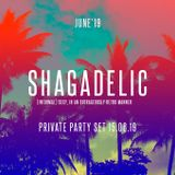 SHAGADELIC - (informal) sexy, in an outrageously retro manner