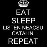 Neacsu Catalin @ Tomorrowland 2013 ( Who's ready to jump ? )