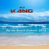 By The Beach Summer 2014 (mixed by Dj Kang)