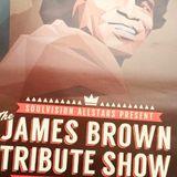 The James Brown Tribute Show ... all vinyl 08/09/12 @ Summerjams, Solheure