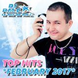 LE MIX DE PMC *TOP HITS FEBRUARY 2017*