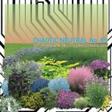 Chaotic Neutral 05/06/17 w/ Django Voris littlewaterradio.com