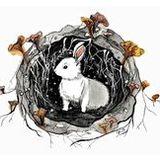Tic Toc Tic Toc- White Rabbit Festival 2019