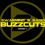 SWARMING B RADIO BUZZCUTS 2017 - Episode 2