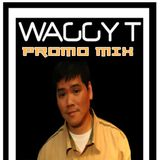 King Waggy Tee Promo Mix June 2012