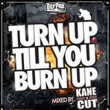 Mixtape- Turn up till You Burn up
