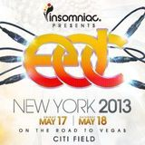 Chuckie - Live @ Electric Daisy Carnival EDC New York (USA) 2013.05.17.