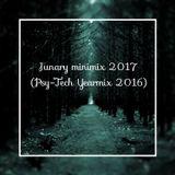 Junary Trance Minimix 2017 (Psy-Tech Yearmix 2016)