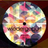 Rivendel - Wiedergeburt (live mix&jam 2014)